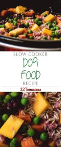 This dog food DIY recipe is super easy and affordable!