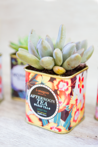 These 11 container gardens are the CUTEST! I love the variety between indoor and outdoor designs. Can't wait to get started DIYing!