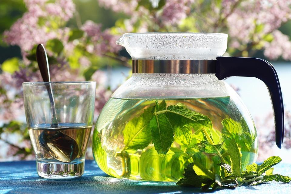 Mint for Indoor Gardening