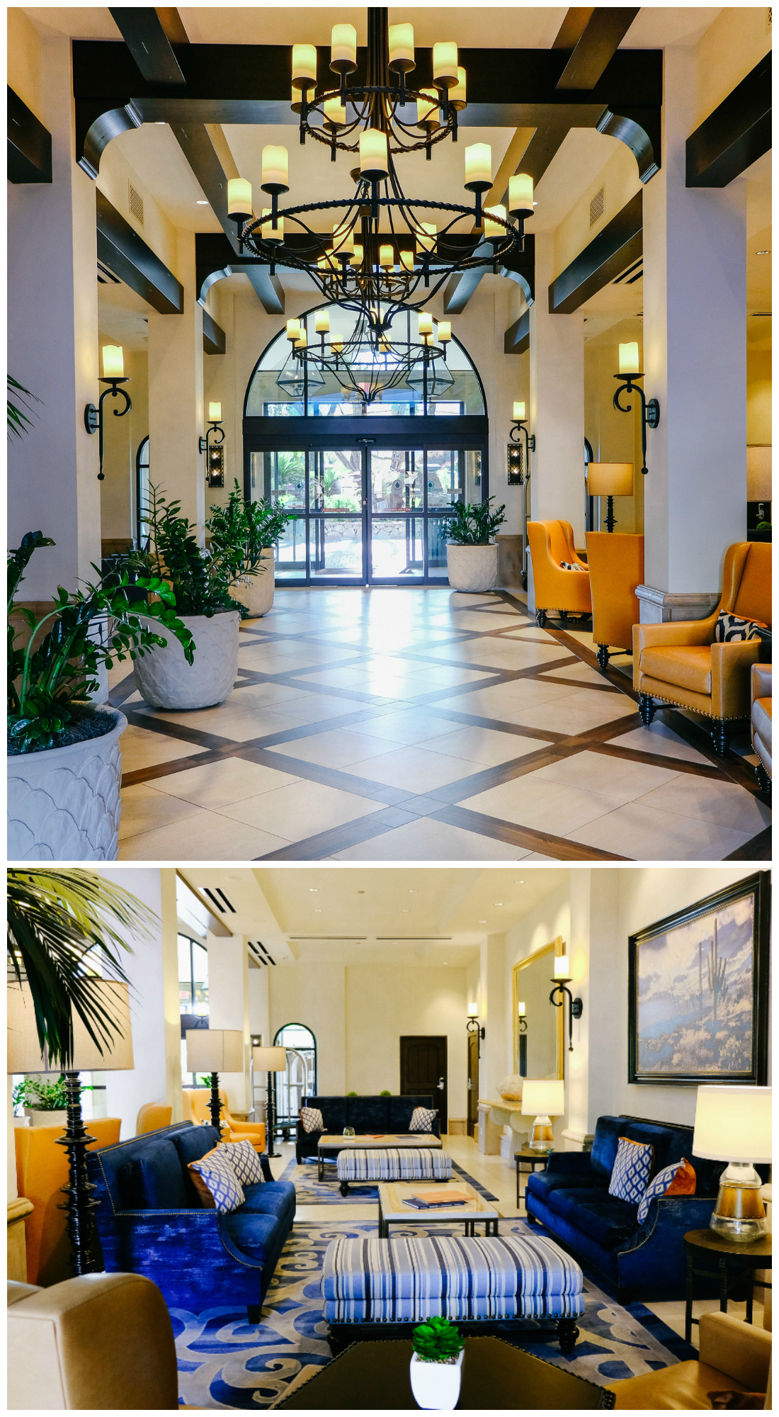 Where to Stay in Scottsdale Arizona