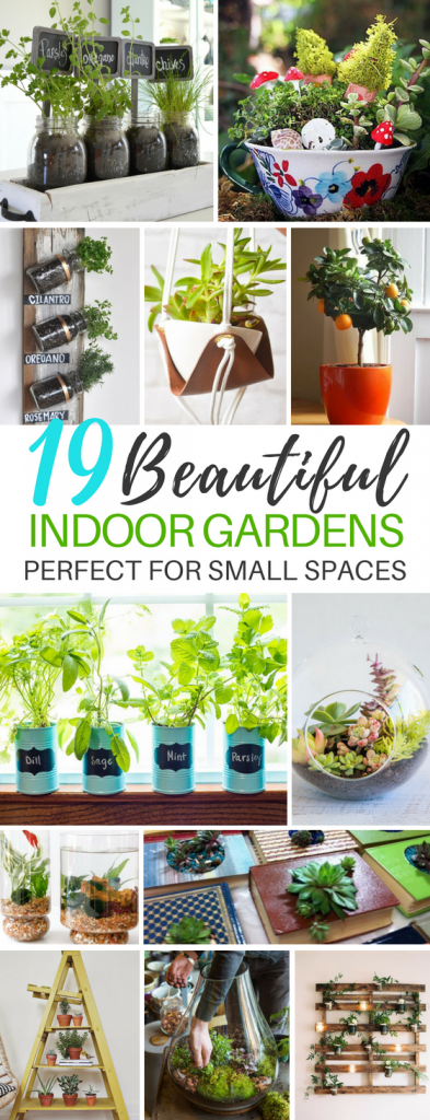 19 Beautiful Indoor Gardening Ideas For Small Homes and Spaces