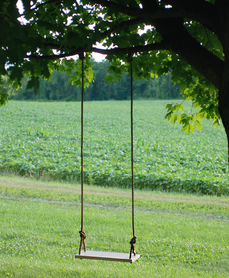 DIY Tree Swing for Your Backyard