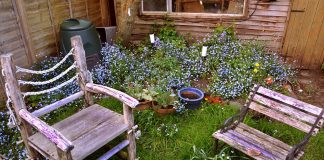 DIY Backyard Projects for the Summer